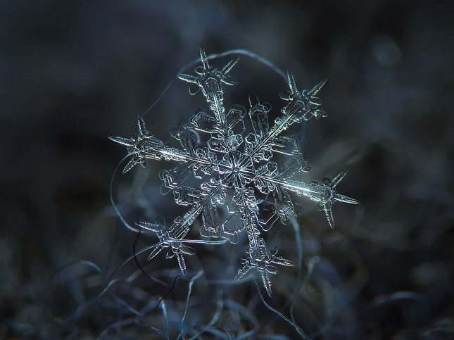 macro-photographie-flocon-de-neige-6